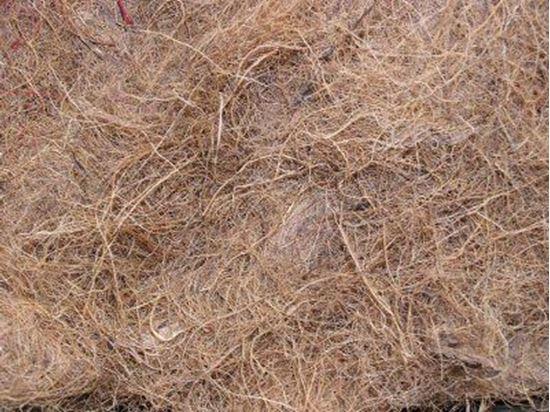 Picture of Kokosové vlákno  - přírodní (0,5kg)