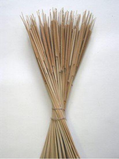 Obrázek z Reed spadix pencil (Typha pencil) - přírodní (100ks)
