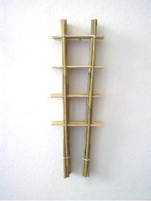 Obrázek Žebřík bambusový 60 cm - BALENÍ 10ks