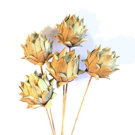 Obrázek z Artichoke khejur - přírodní, na stonku (10ks)