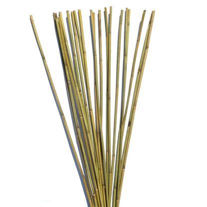 Obrázek Tyč bambusová 105 cm, 6-8 mm