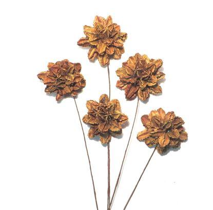 Obrázek Arjun flower - přírodní, na stonku (10ks)