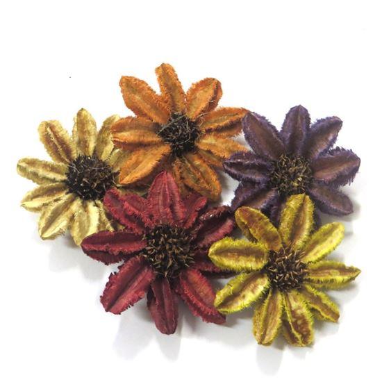 Obrázek z Arjun sunflower - barevná (25ks)