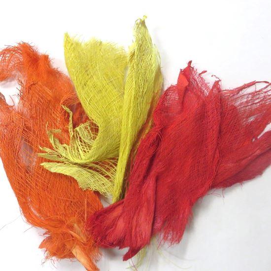 Obrázek z Palm fibre - barevná (0,5kg)