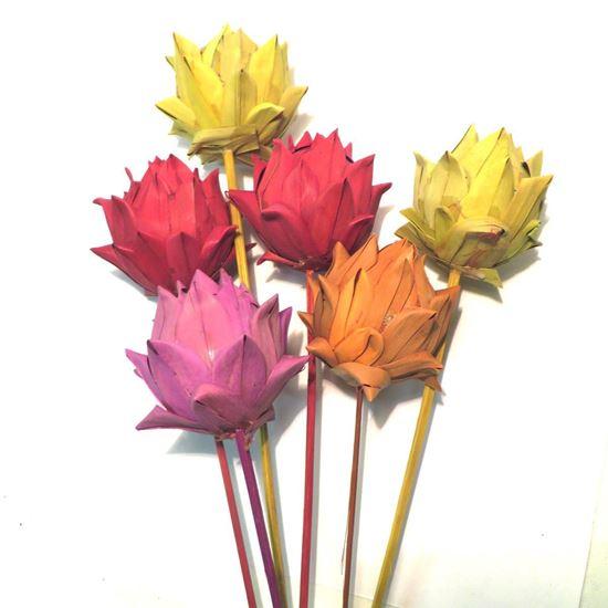 Picture of Artichoke khejur - barevný, na stonku (10ks)