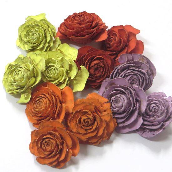 Obrázek z Cedar rose mini - barevná (0,5kg)