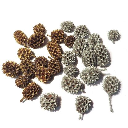 Obrázek Casurina - zlatá, stříbrná (0,5kg)