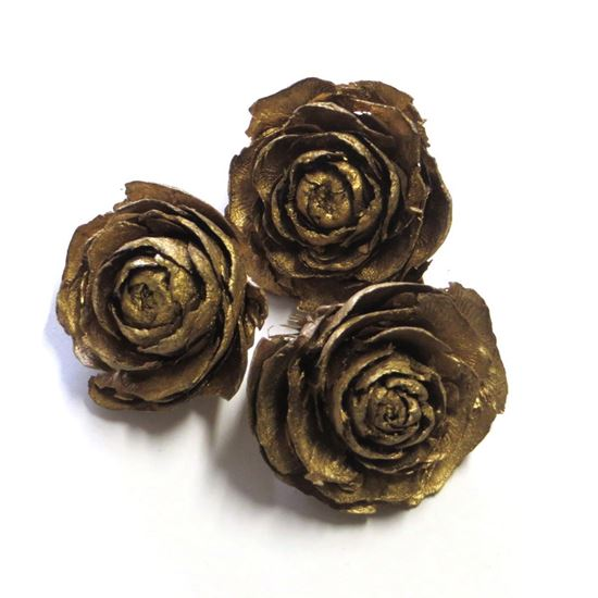 Picture of Cedar rose - zlatá (25ks)