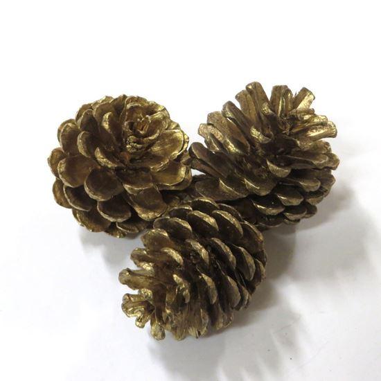 Picture of Blue pine - šišky - zlatá, stříbrná (20ks)